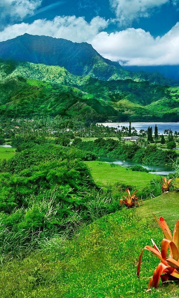 Princeville Real Estate Overlooking Hanalei